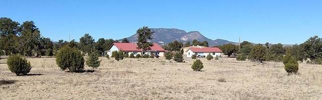 143 Navajo Way, Datil, NM 87821 (MLS #982320) :: The Bigelow Team / Red Fox Realty