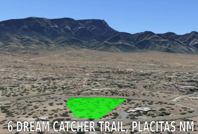 6 Dream Catcher Trail, Placitas, NM 87043 (MLS #982764) :: The Buchman Group