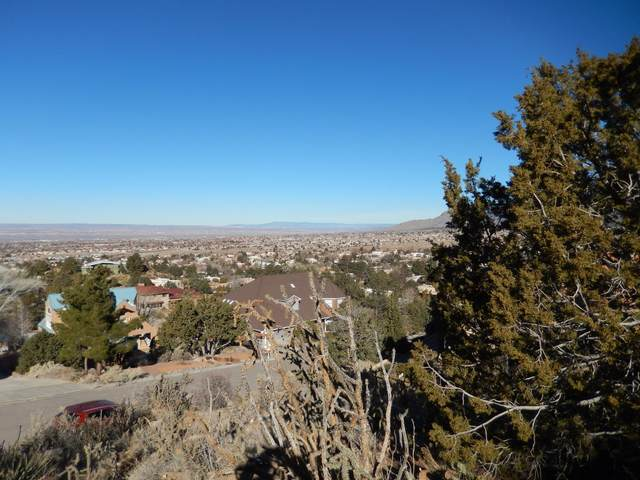 4428 Skyline Court NE, Albuquerque, NM 87111 (MLS #982965) :: The Bigelow Team / Red Fox Realty