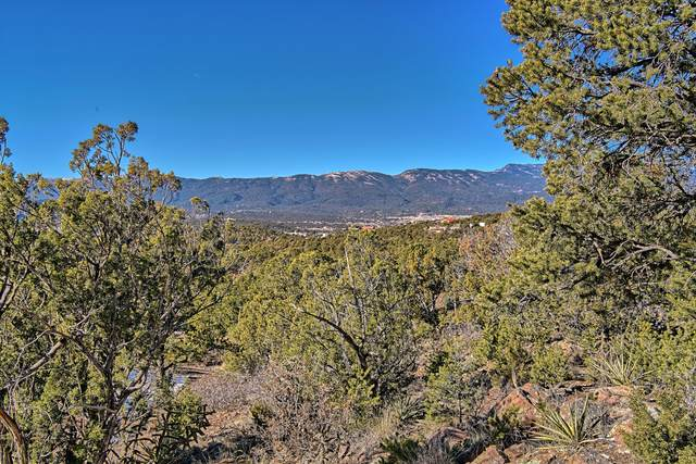 Concetta Court, Sandia Park, NM 87047 (MLS #983017) :: Keller Williams Realty