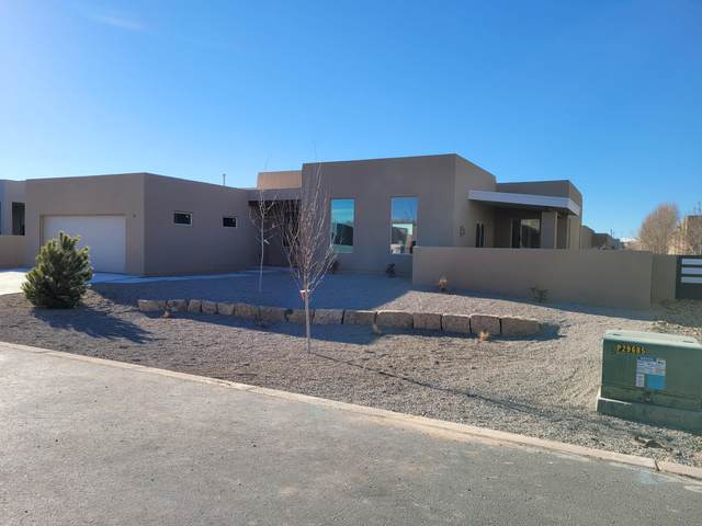 902 Paseo Los Coyotes, Bernalillo, NM 87004 (MLS #984063) :: Sandi Pressley Team