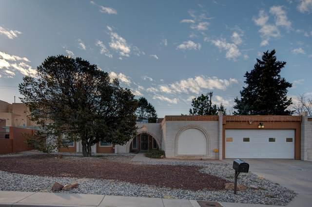 12424 Princess Jeanne Avenue NE, Albuquerque, NM 87112 (MLS #984363) :: Keller Williams Realty