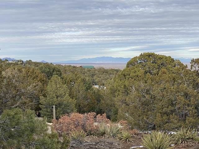22 Morper Road, Edgewood, NM 87015 (MLS #984595) :: Campbell & Campbell Real Estate Services