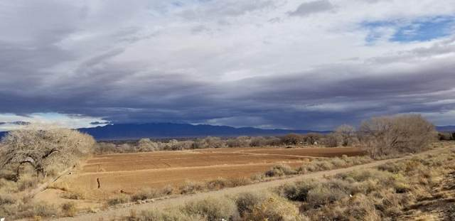 1223 S Mesa Road, Belen, NM 87002 (MLS #985151) :: Keller Williams Realty