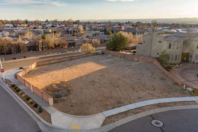 9201 La Tierra Court NE, Albuquerque, NM 87122 (MLS #986804) :: Keller Williams Realty