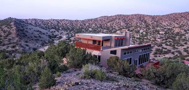 75 Camino De Las Huertas, Placitas, NM 87043 (MLS #987607) :: Keller Williams Realty