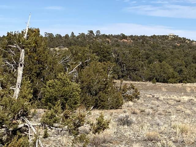 Lots 24-26 God's Acre Road, Ramah, NM 87321 (MLS #987652) :: The Buchman Group