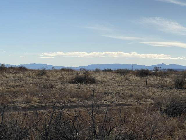 Caballo Avenue, McIntosh, NM 87032 (MLS #987665) :: The Buchman Group