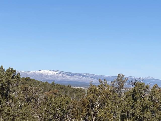 1078 Deer Canyon Trail, Mountainair, NM 87036 (MLS #987717) :: The Buchman Group