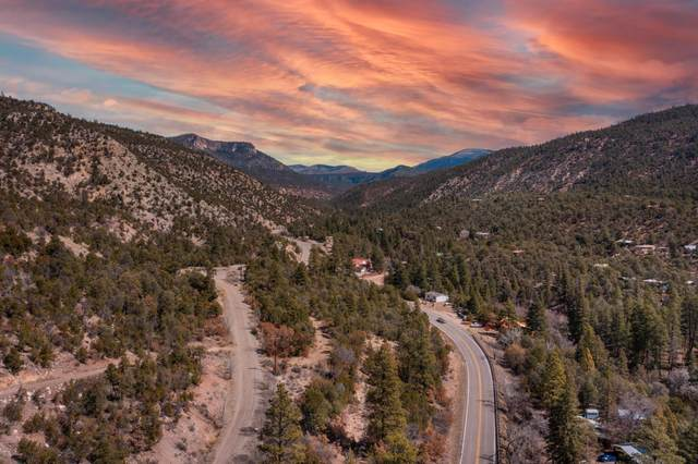 Eagle Heights North Tract:1E1a, Jemez Springs, NM 87025 (MLS #987872) :: The Buchman Group