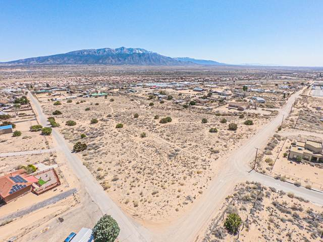 Camino Alto Road, Bernalillo, NM 87004 (MLS #988494) :: Sandi Pressley Team
