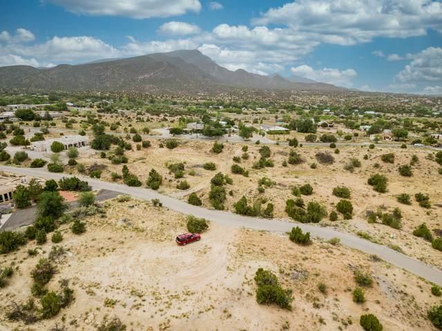 15 La Entrada Lot11, Placitas, NM 87043 (MLS #988596) :: Sandi Pressley Team