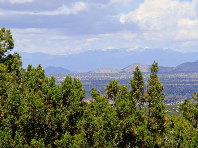 16 Osito Road, Sandia Park, NM 87047 (MLS #988876) :: Campbell & Campbell Real Estate Services