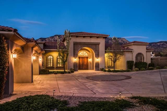 11817 Cortona Lane NE, Albuquerque, NM 87122 (MLS #989064) :: The Buchman Group