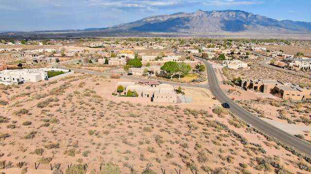 114 Todos Juntos Road, Corrales, NM 87048 (MLS #989452) :: Keller Williams Realty
