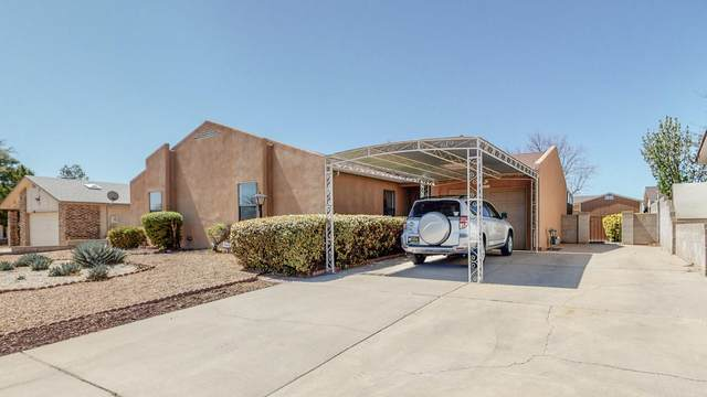 313 Western Hills Drive SE, Rio Rancho, NM 87124 (MLS #989535) :: The Buchman Group