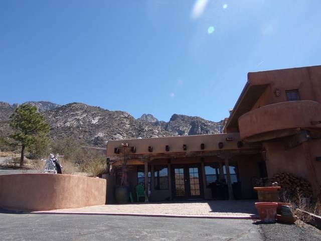 41 Tierra Monte Drive NE, Albuquerque, NM 87122 (MLS #989573) :: Keller Williams Realty