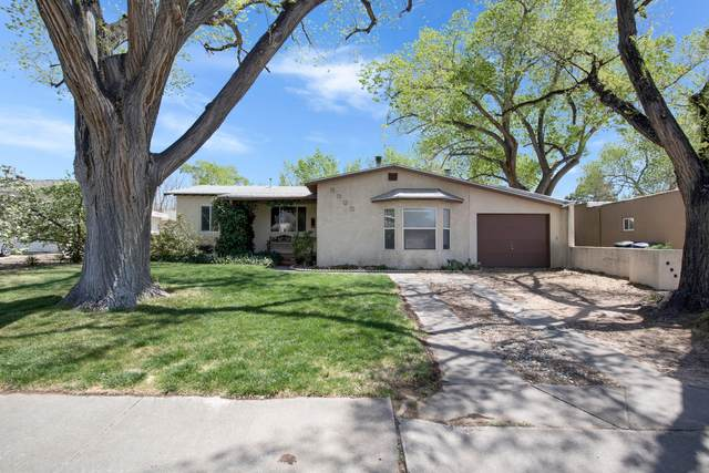 4938 Palo Alto Avenue SE, Albuquerque, NM 87108 (MLS #989574) :: Campbell & Campbell Real Estate Services