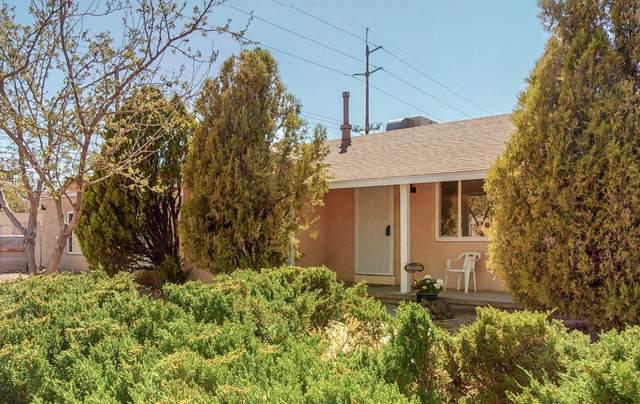 601 Solano Drive NE, Albuquerque, NM 87110 (MLS #989595) :: The Buchman Group
