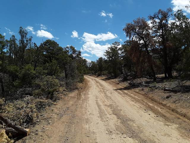 0 Misty Lane, Ramah, NM 87321 (MLS #989672) :: Keller Williams Realty