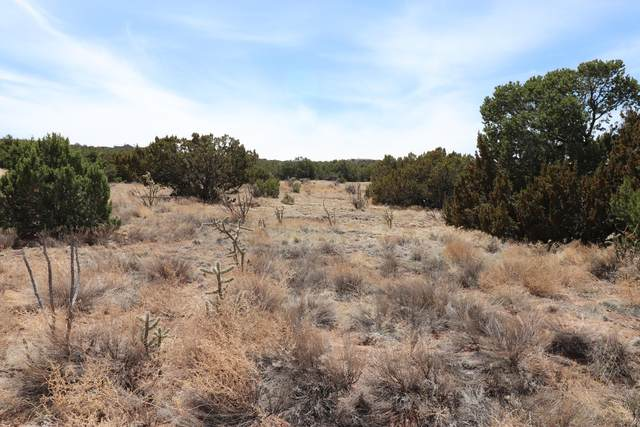 21 Camino Real, Sandia Park, NM 87047 (MLS #989710) :: Campbell & Campbell Real Estate Services