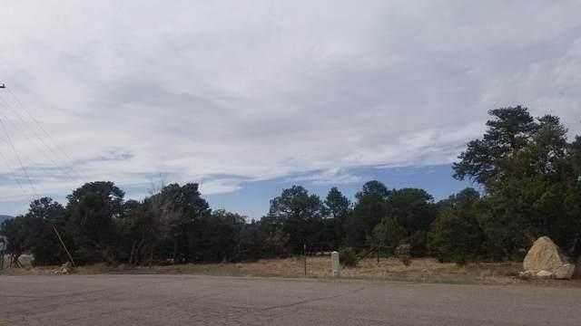 3 Pinon Ridge Road, Tijeras, NM 87059 (MLS #989713) :: Keller Williams Realty