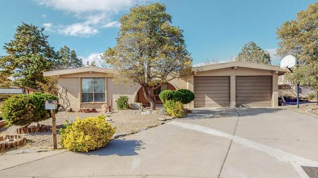 12009 Prospect Avenue NE, Albuquerque, NM 87112 (MLS #989775) :: Campbell & Campbell Real Estate Services