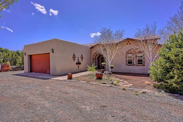 14 Red Hawk Road, Tijeras, NM 87059 (MLS #989832) :: The Buchman Group