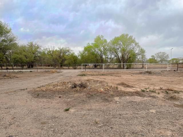 1604 Bernard Thomas Lane SW, Albuquerque, NM 87105 (MLS #990099) :: The Buchman Group