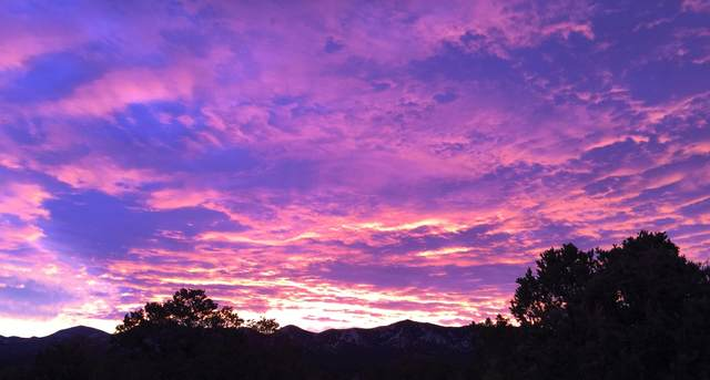 15 Tigua Drive, Sandia Park, NM 87047 (MLS #991071) :: The Buchman Group