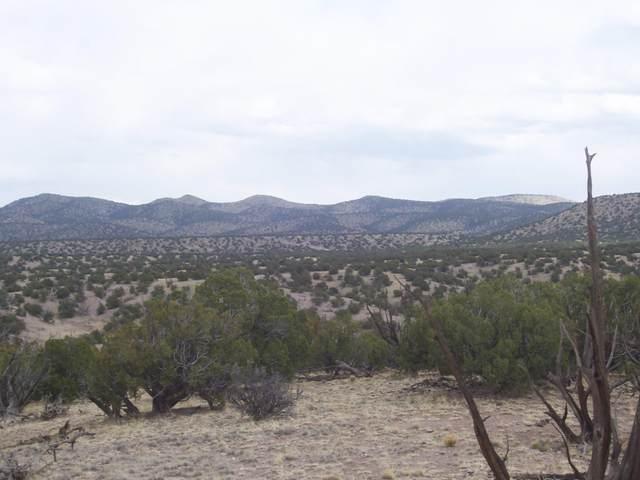 51 Camino Del Sueno, Magdalena, NM 87825 (MLS #991604) :: Sandi Pressley Team