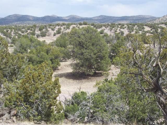 52 Camino Del Sueno, Magdalena, NM 87825 (MLS #991620) :: Sandi Pressley Team