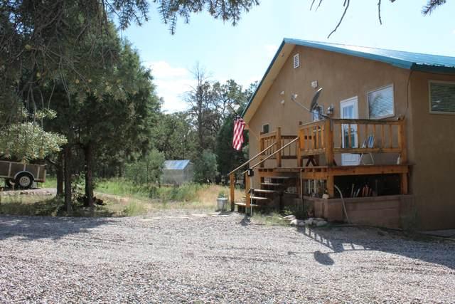 103 Acoma Road, Regina, NM 87046 (MLS #992116) :: Campbell & Campbell Real Estate Services
