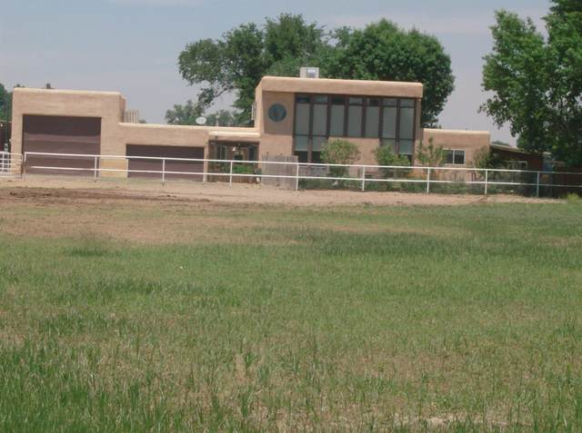 239 Edeal Road, Los Lunas, NM 87031 (MLS #992702) :: Campbell & Campbell Real Estate Services