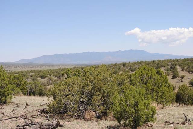 180 Camp Lane, Magdalena, NM 87825 (MLS #993231) :: Keller Williams Realty