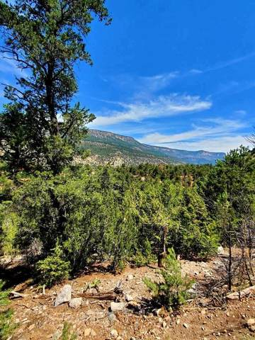 Lot C1 Indian Mesa Trail, Jemez Springs, NM 87025 (MLS #993267) :: Sandi Pressley Team