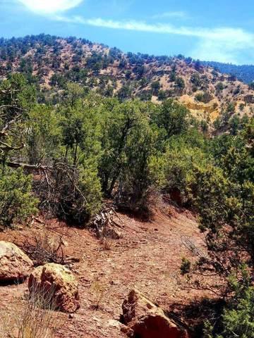 Lot C2 Indian Mesa Trail, Jemez Springs, NM 87025 (MLS #993269) :: Sandi Pressley Team