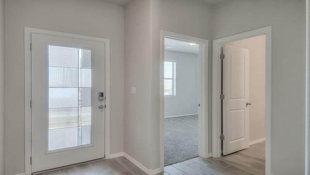 4424 Skyline Loop NE, Rio Rancho, NM 87144 (MLS #993385) :: Berkshire Hathaway HomeServices Santa Fe Real Estate