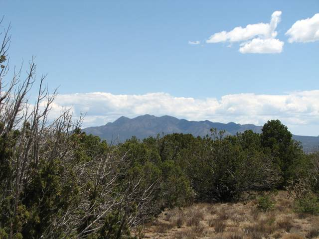 La Madera Road, Sandia Park, NM 87047 (MLS #993480) :: Sandi Pressley Team