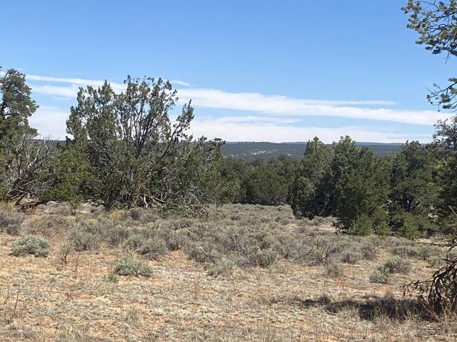 Lot 103 Ranch Dr - Pine Meadows Unit 2, Ramah, NM 87321 (MLS #994047) :: Sandi Pressley Team