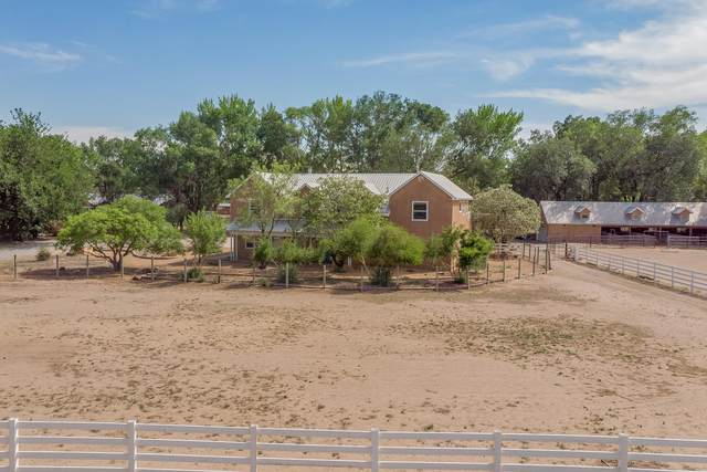 295 Applewood Road, Corrales, NM 87048 (MLS #994065) :: Campbell & Campbell Real Estate Services