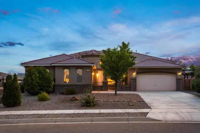 1001 Threadgrass Road NE, Rio Rancho, NM 87144 (MLS #994701) :: Berkshire Hathaway HomeServices Santa Fe Real Estate