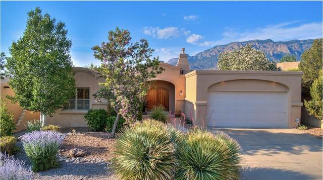 13109 Sunrise Trail NE, Albuquerque, NM 87111 (MLS #994781) :: The Buchman Group