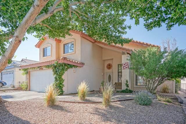 8112 William Moyers Avenue NE, Albuquerque, NM 87122 (MLS #994782) :: Keller Williams Realty