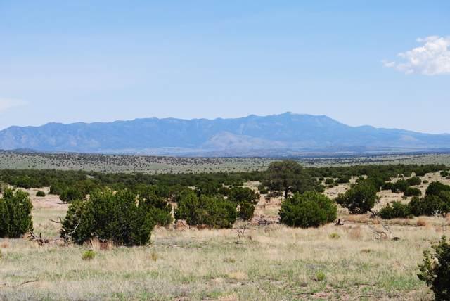 182 Camp Lane, Magdalena, NM 87825 (MLS #995234) :: Keller Williams Realty