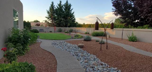 266 Dandelion Lane, Corrales, NM 87048 (MLS #995276) :: Campbell & Campbell Real Estate Services