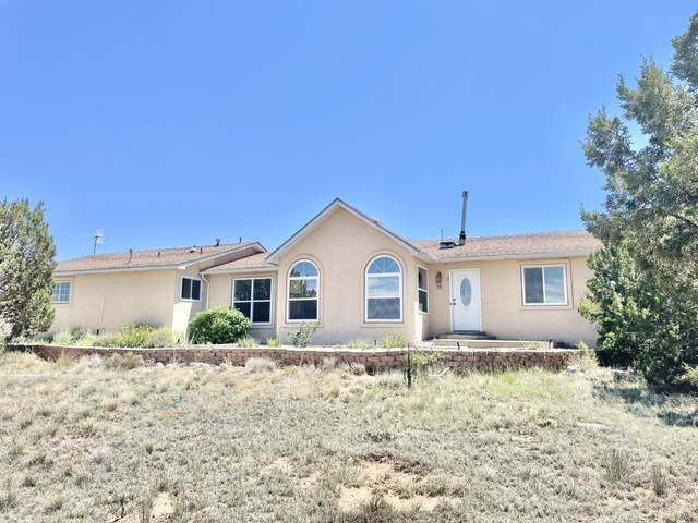 10 Pinto Road, Edgewood, NM 87015 (MLS #995967) :: Campbell & Campbell Real Estate Services