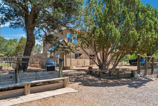 45 Meadow Drive, Tijeras, NM 87059 (MLS #995980) :: Sandi Pressley Team