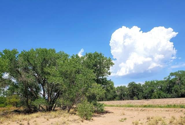 21 Acres Isleta And Gun Club Boulevard SW, Albuquerque, NM 87105 (MLS #996237) :: Keller Williams Realty