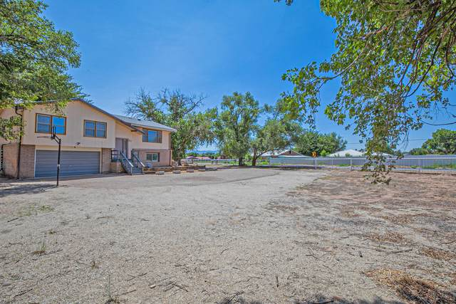 85 Molina Road, Peralta, NM 87042 (MLS #996318) :: Sandi Pressley Team